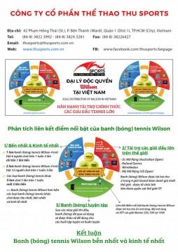 lien_ket_diem_noi_bat_banh_wilson_01