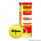 Banh tennis Championship Extra Duty - WRT100101